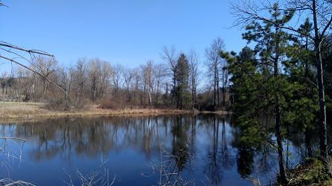 Nashua River Rail Trail1