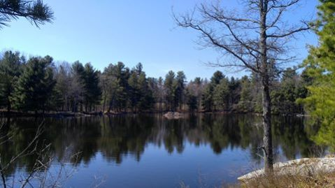 Nashua River Rail Trail2