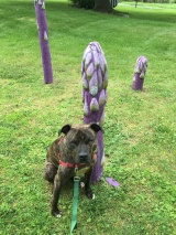 Purple asparagus scupture