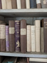 A shelf of the adult library